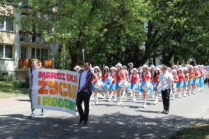 Read more about the article Puławy – Marsz dla Życia iRodziny 2017